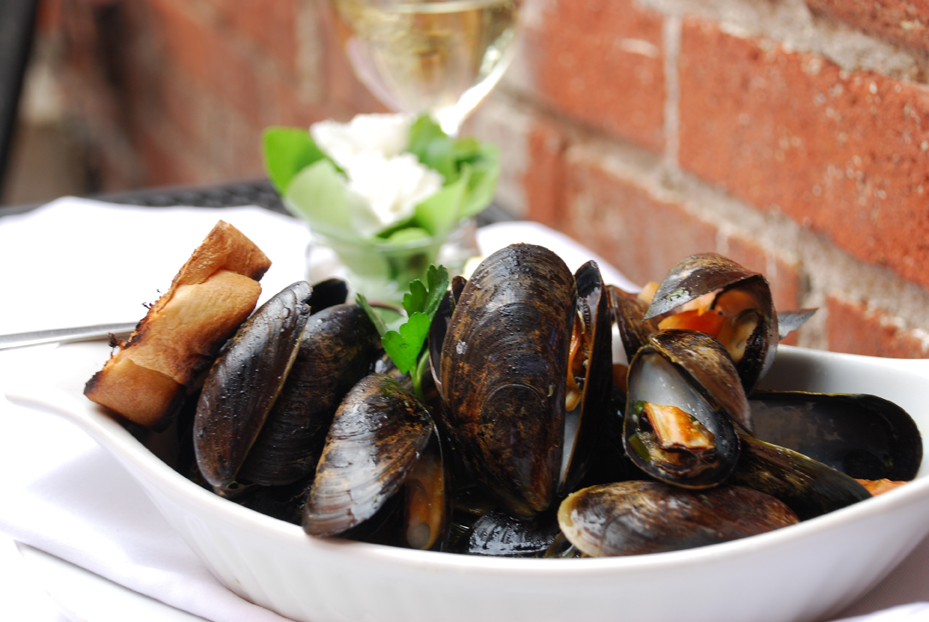mussels low res