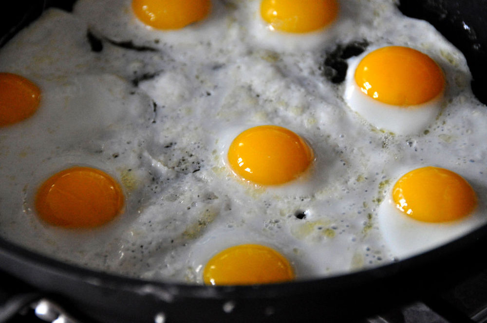 Buying Local Eggs in the Age of Bird Flu