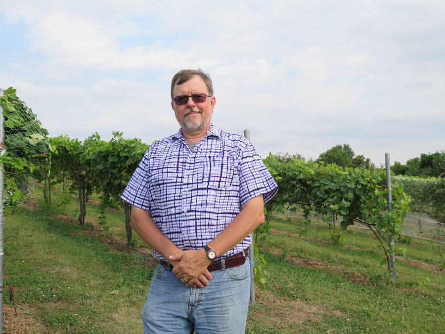 Jerry Eisterhold Cultivates Voice of Vox Vineyards